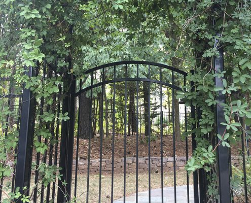 arch gate with arbor